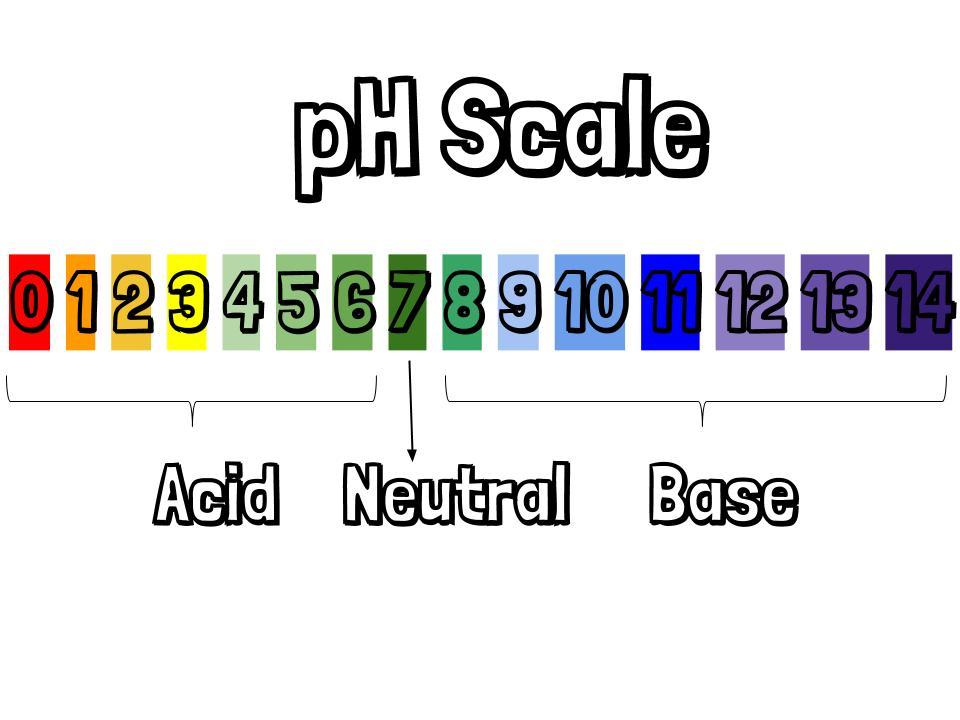 Acid Vs Base – Mealea